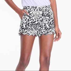 2 for $10! J. Crew Factory Animal Print Shorts